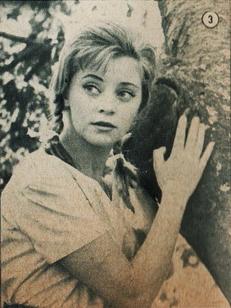 Ana Szeles
